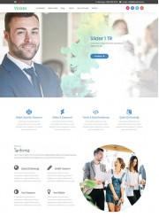 Vision WordPress Çok Dilli Tema